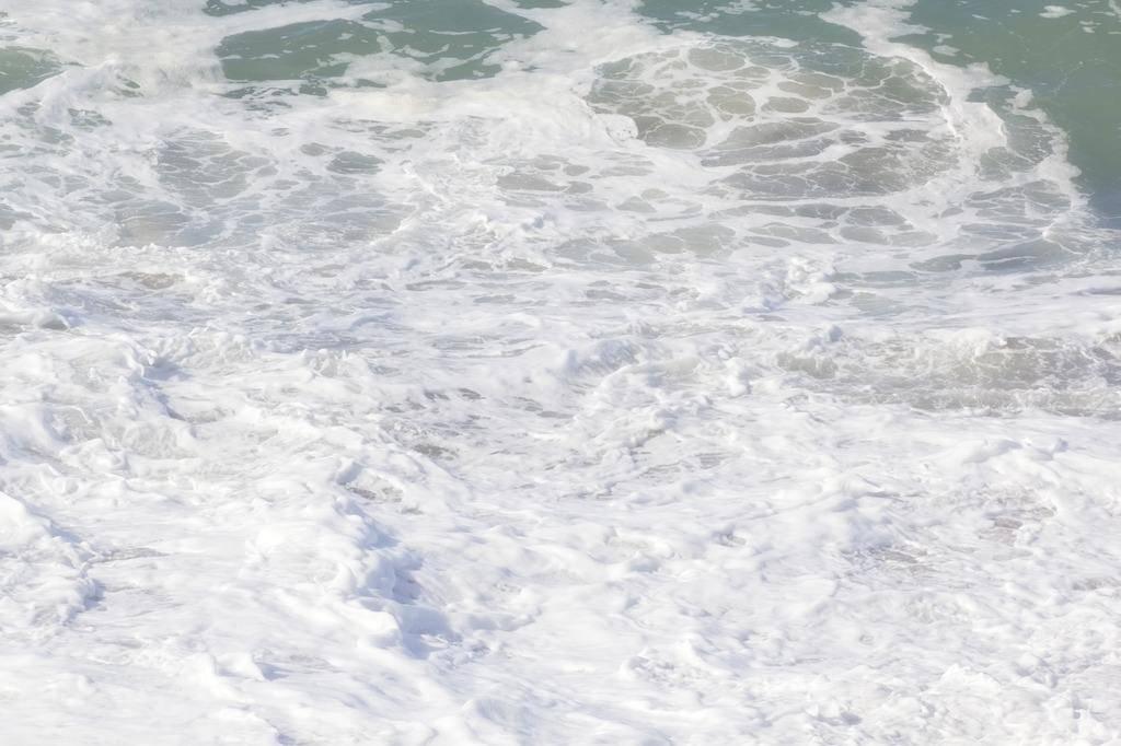 沧浪之水插图.jpg