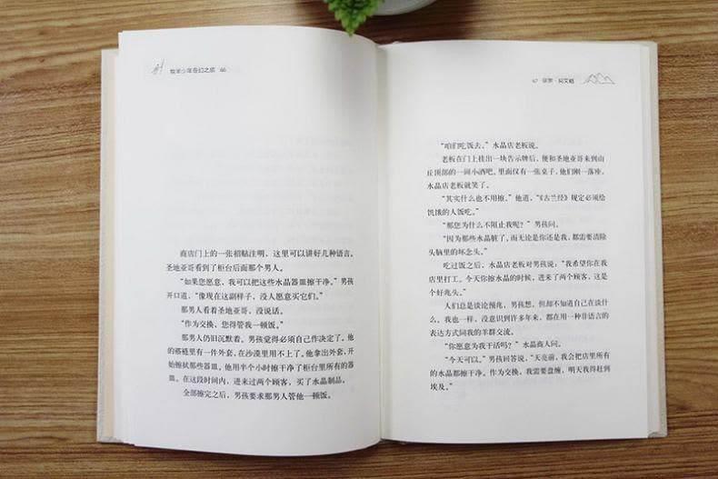 牧羊少年奇幻之旅内页.jpg