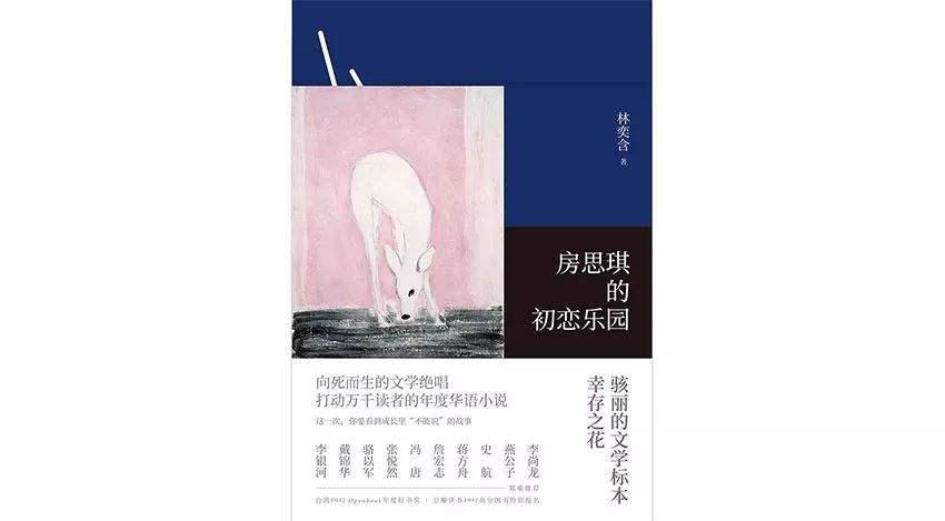房思琪的初恋乐园txt、pdf全本封面.jpg
